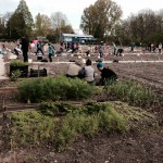 2. Garden in the City - yogadine 17 April.JPG