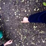 8. Tuin yogadine 10 april