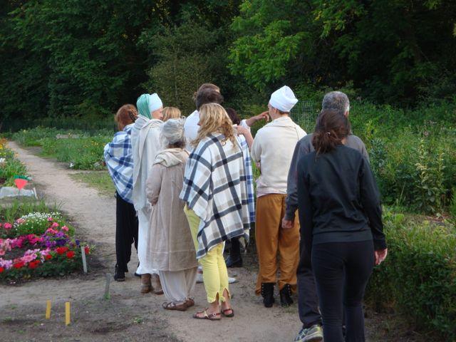 Evening walk through our Veggie Garden